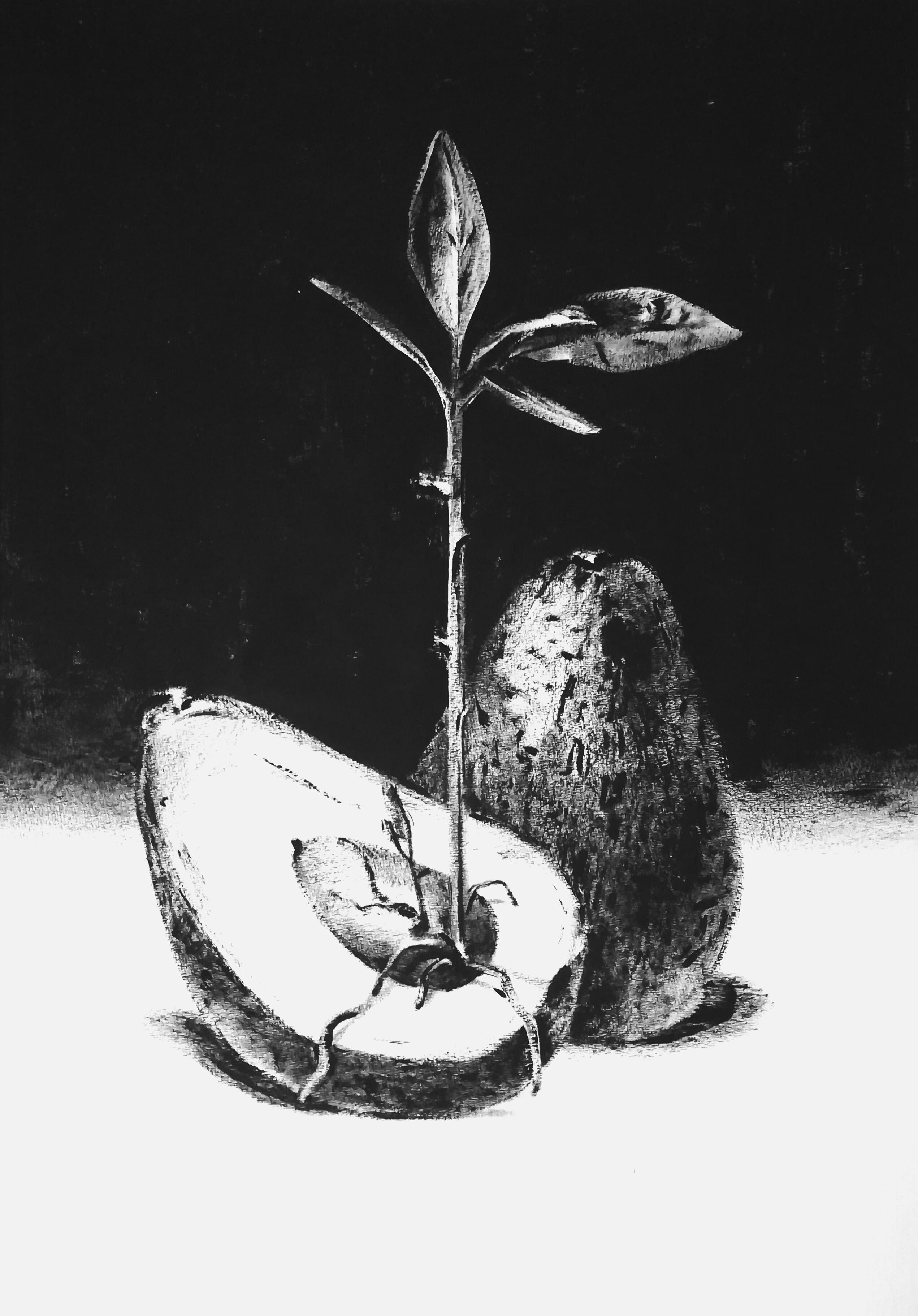 Славнова Анастасия картина Авокадо