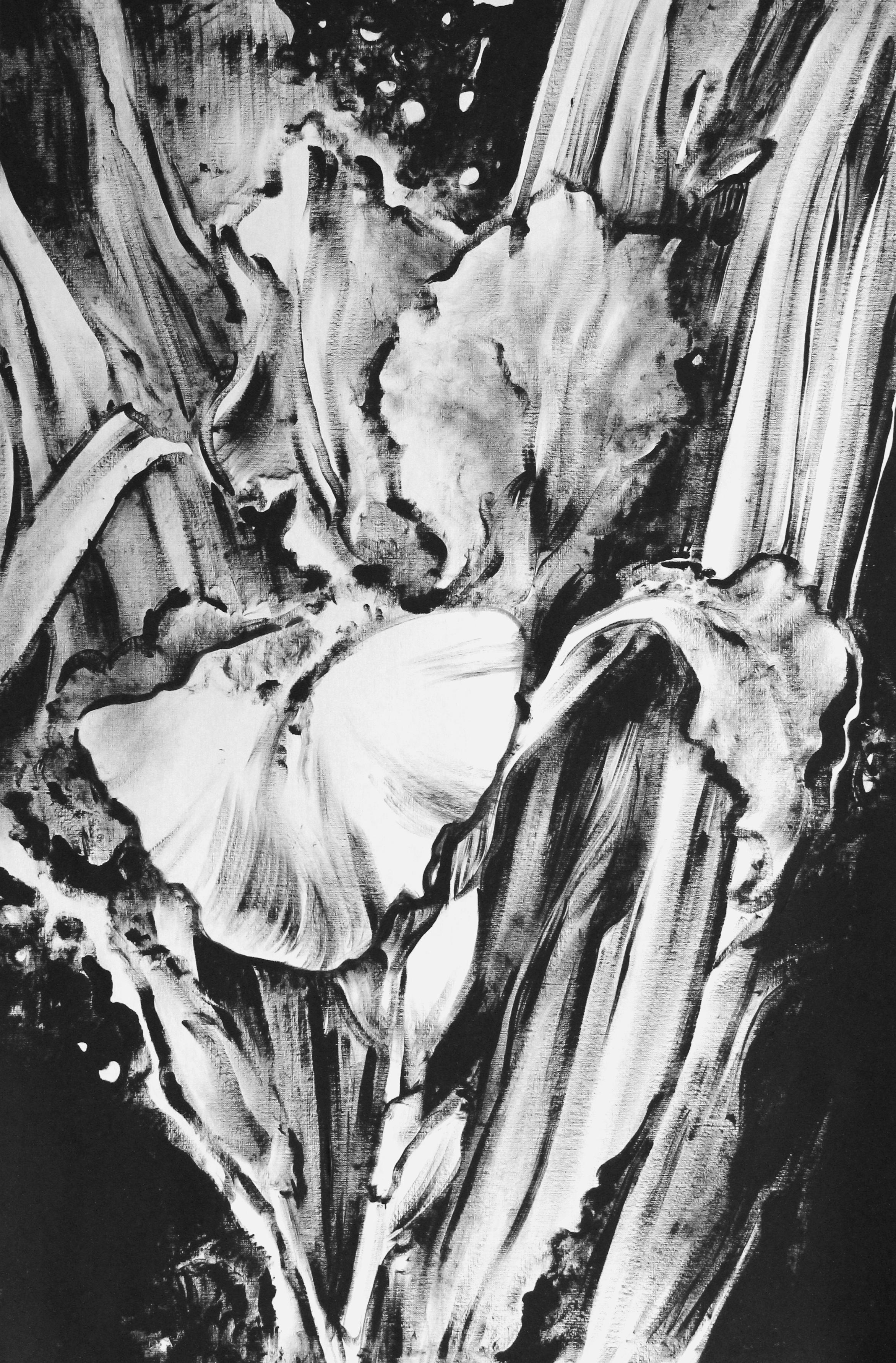 Славнова Анастасия картина Ирис